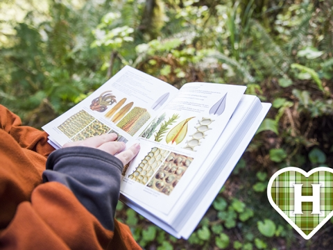 Student looking at biology book in the forest