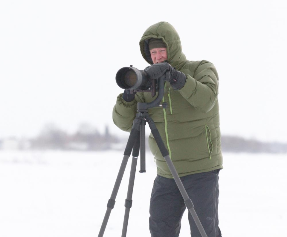 Mike Anderson, professor emeritus of Environmental Resources Engineering and an award-winning bird photographer, is seen photographing Snowy Owls in Canada in February 2015.